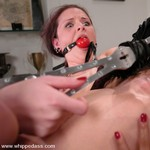 Porn Pictures - WhippedAss.com - Spanking Sex Pics
