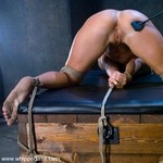 Porn Pictures - WhippedAss.com - Real Spanking Asses