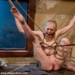 Porn Pictures - WhippedAss.com - Hard Spanking Pics