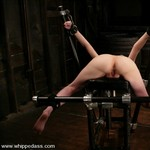 Porn Pictures - WhippedAss.com - Hot Spanking Pics