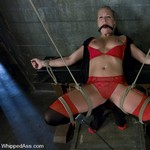 Porn Pictures - WhippedAss.com - Spanking Sex Pics