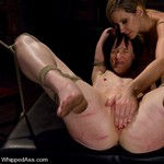 Porn Pictures - WhippedAss.com - Brutal Sex Spanking